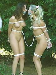BDSM Hardcore
